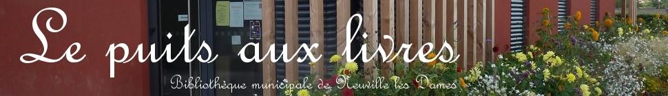 Bibliothèque de Neuville les Dames